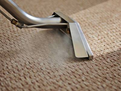 Advanced Floor Care & Moldings Carpet Cleaning
